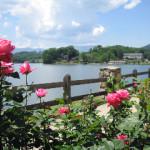 New Facebook Group for Walkers at Lake Junaluska